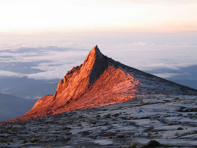 A long hike up imposing Mount Kinabalu, Borneo Global Grasshopper