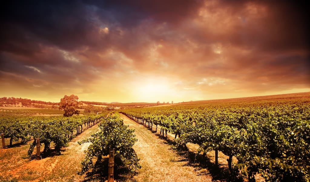 Barossa Valley - most beautiful places to visit in Australia
