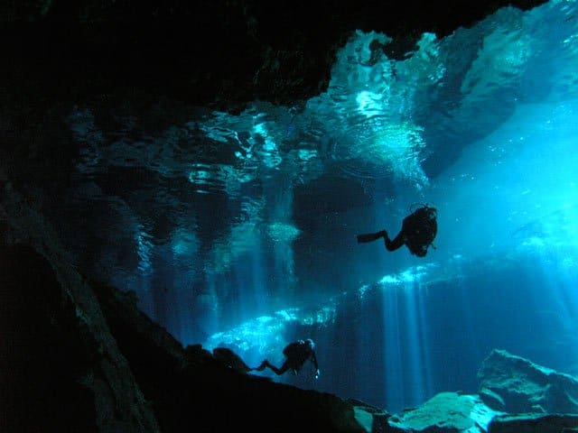In Pictures: Cenotes of Mexico Global Grasshopper