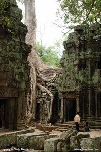 Angkor Wat by Carly Henderson on GlobalGrasshopper.com