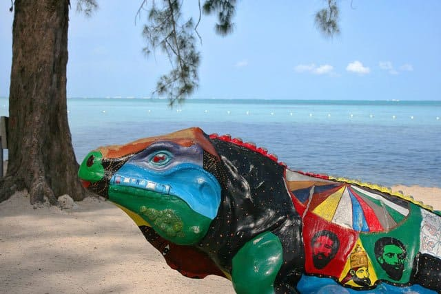 Discovering Grand Cayman, Caribbean – turtles, pirates and a hurricane aftermath Global Grasshopper