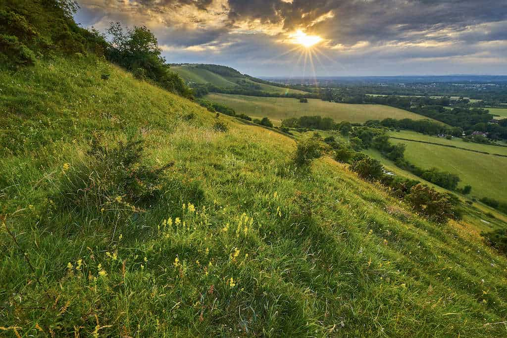 South Downs UK