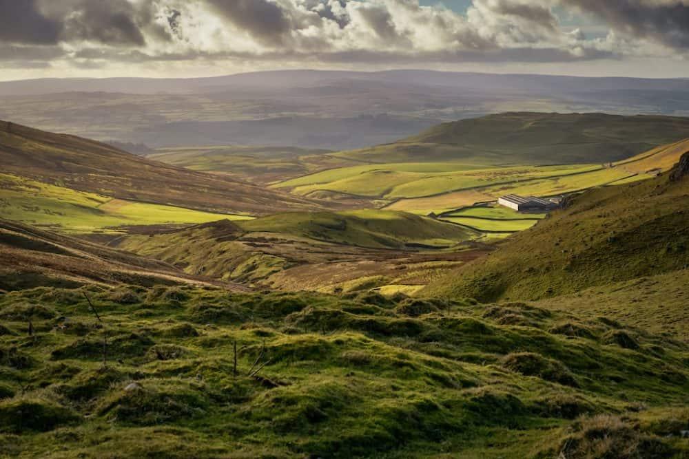 Yorkshire Moors - dog friendly UK places