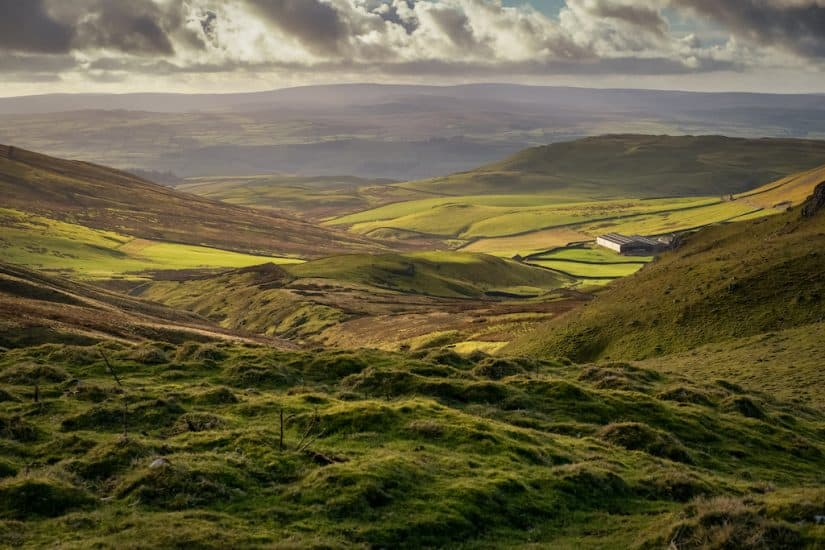 Yorkshire Moors - dog friendly UK places
