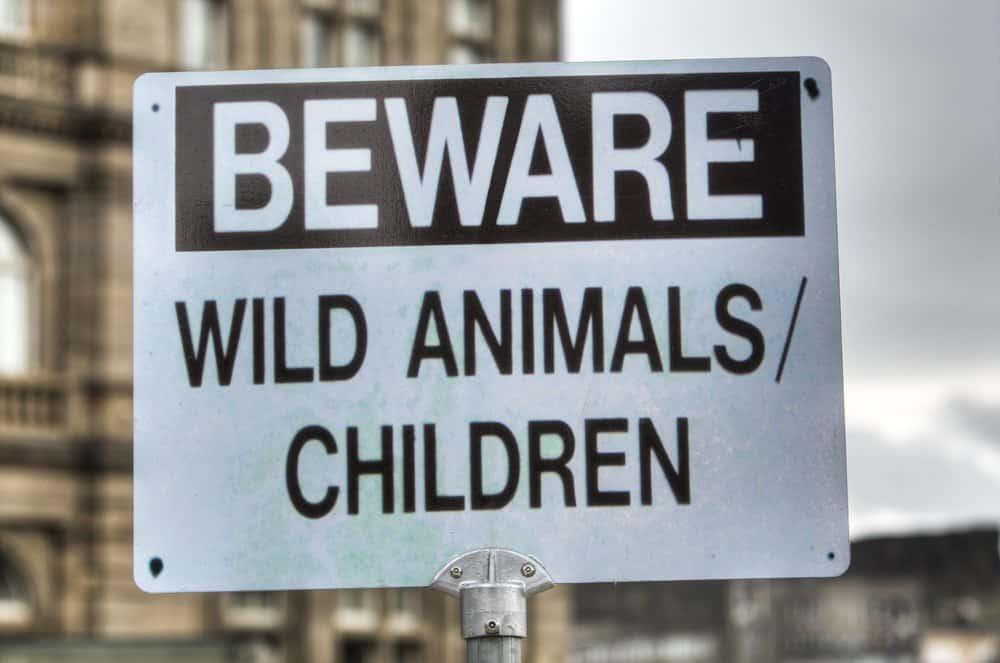 Beware wild animals sign on GlobalGrasshopper.com