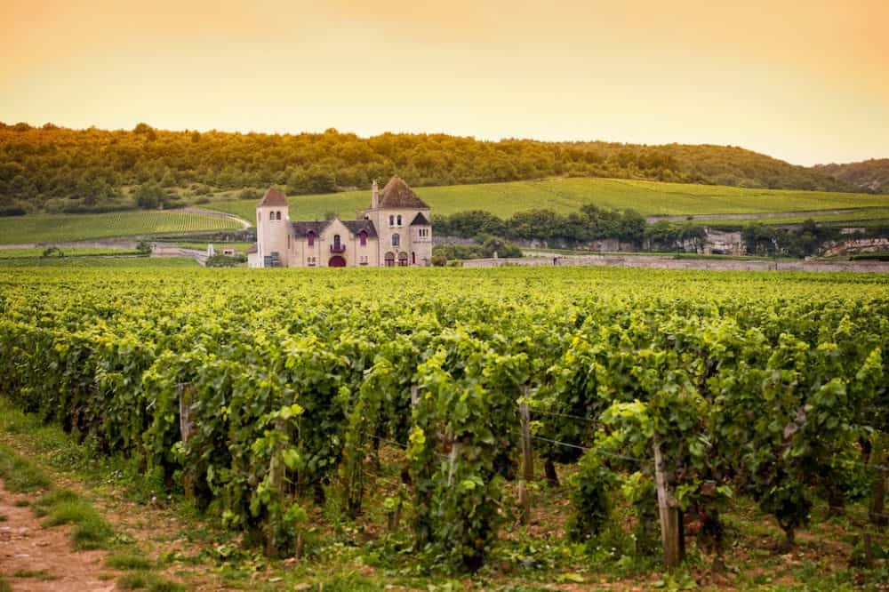 Beautiful Burgundy France