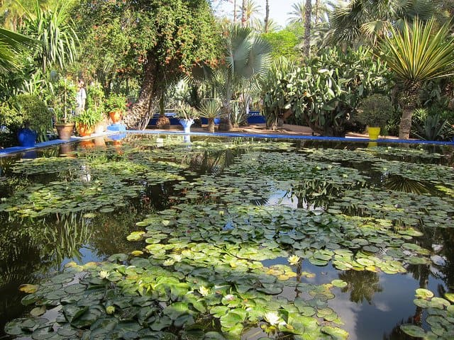 Majorelle Garden - Places to visit in Marrakech on GlobalGrasshopper.com