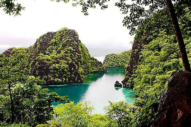 Coron, Palawan, Philippines on GlobalGrasshopper.com