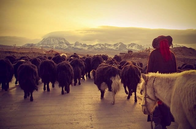 10 of the most beautiful places to visit in China & Tibet Global Grasshopper