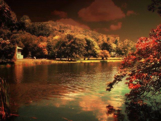 Virginia - Autumn breaks on GlobalGrasshopper.com