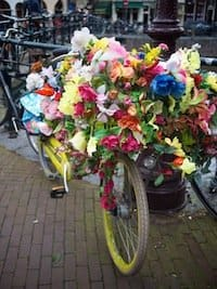 Amsterdam bicycle on GlobalGrasshopper.com