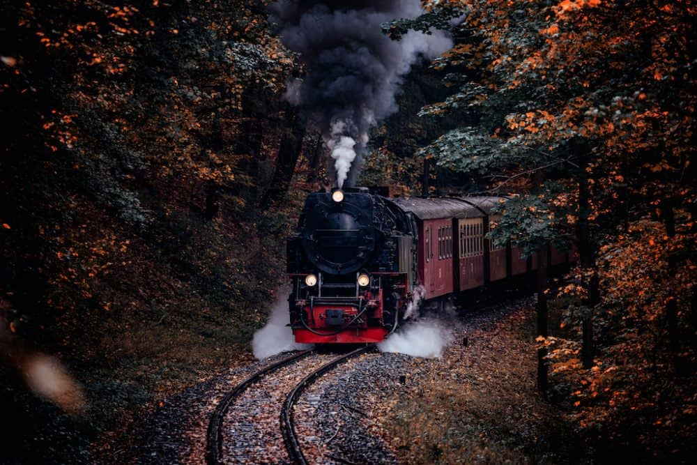 Harz National Park in Germany