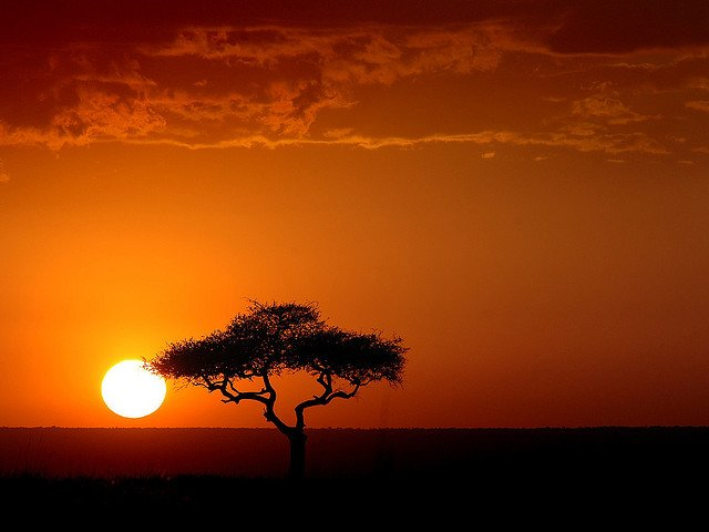 Safari in Kenya - Kenya sunset on GlobalGrasshopper.com
