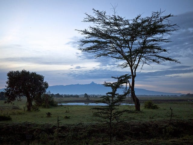 Safari in Kenya - Mount Kenya on GlobalGrasshopper.com