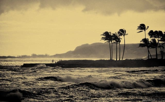 Surf Hawaii on GlobalGrasshopper.com