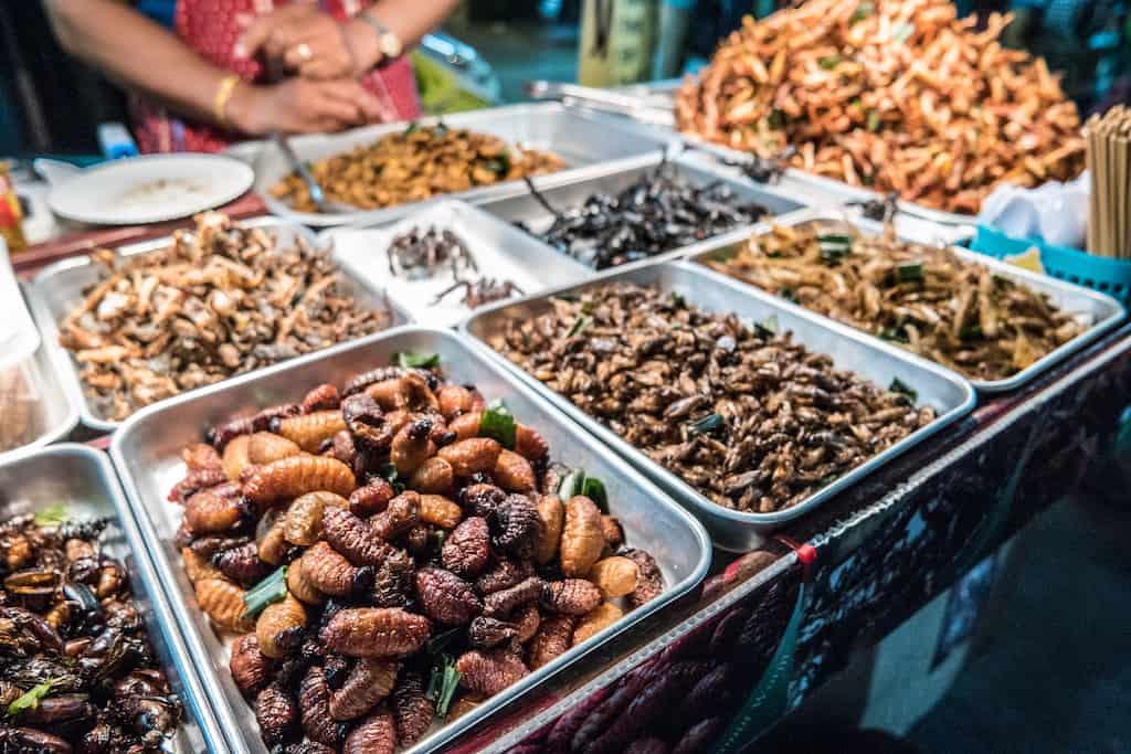 Eating insects Bangkok