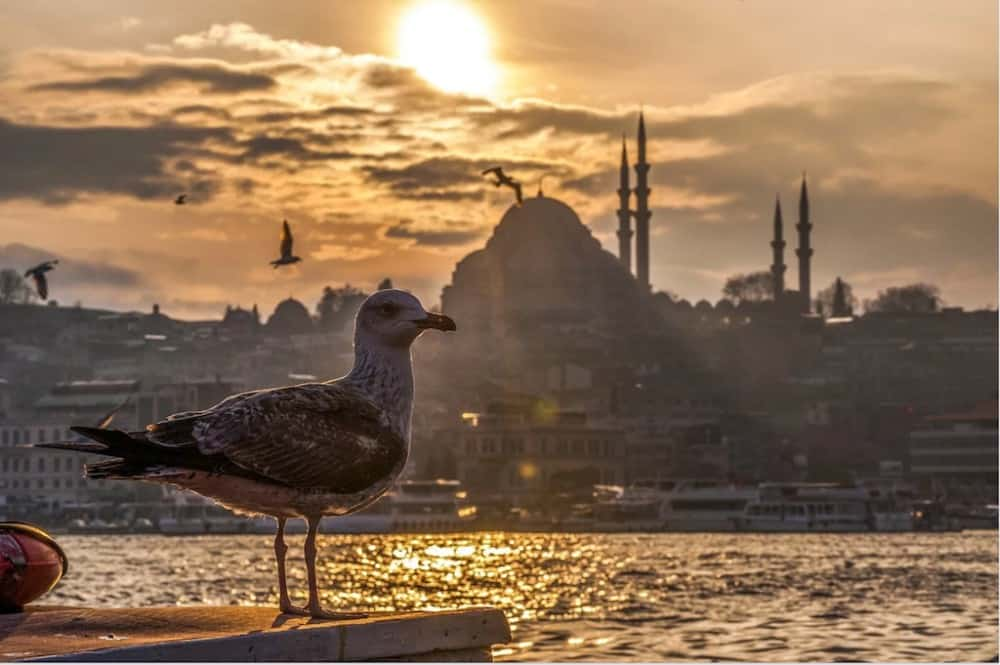 Istanbul - most beautiful places to visit in Instanbul