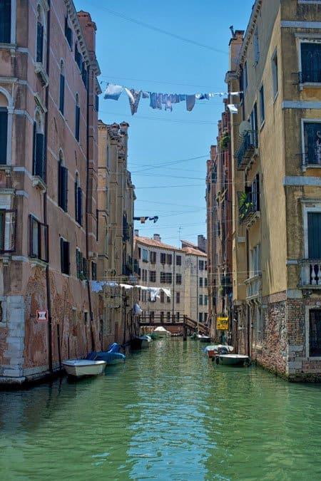 In BIG Pictures: Venice Global Grasshopper