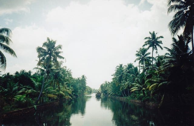 Kerala Backwater on GlobalGrasshopper.com