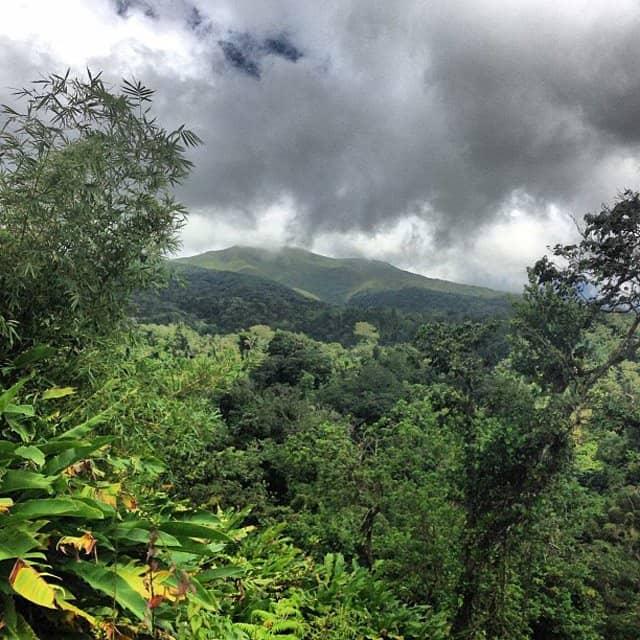Liming in St Vincent: conquering La Soufriere Global Grasshopper