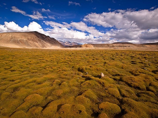 15 of the most unusual natural landscapes in the world Global Grasshopper
