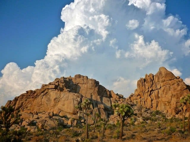 Joshua Tree Rocks on GlobalGrasshopper.com