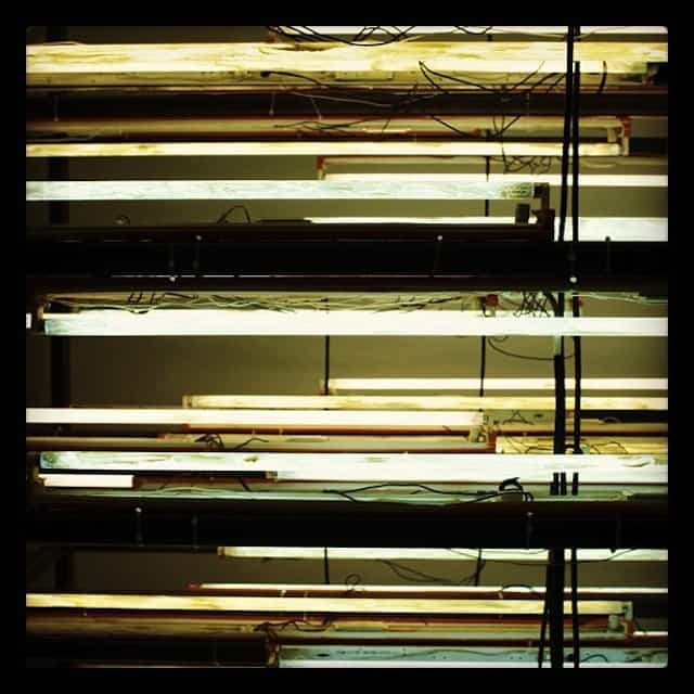 light installation at Tate Modern #photo #ig #london #art