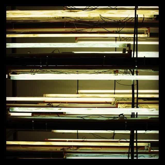 light installation at Tate Modern #photo #ig #london #art