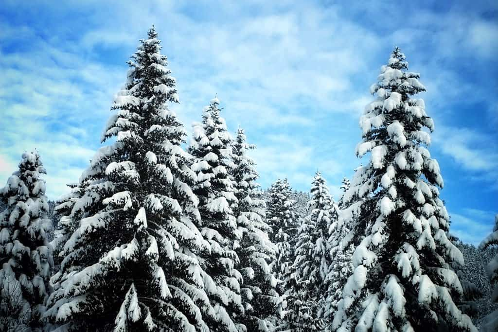 In BIG pictures: winter in Villars, Switzerland Global Grasshopper