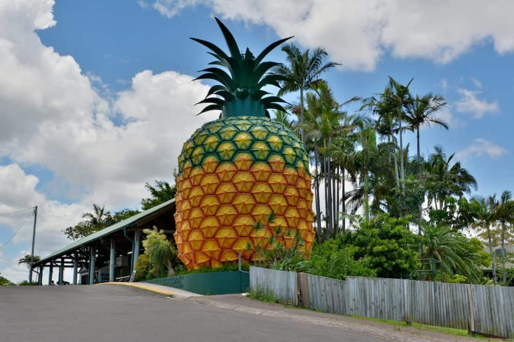 Big Pineapple Australia
