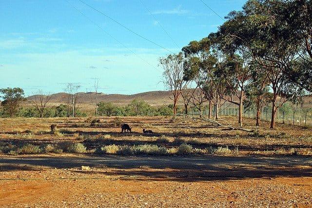 Scenic Drives of Australia