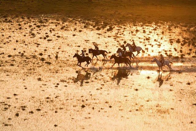 HORSEBACK SAFARIS on GlobalGrasshopper.com