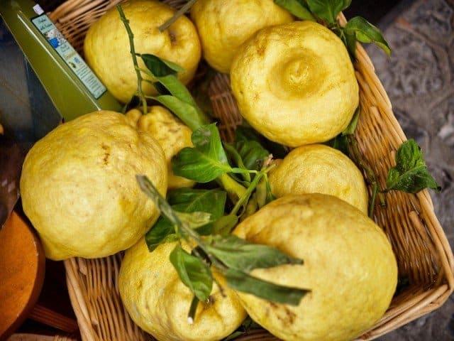 Lemons Amalfi Coast