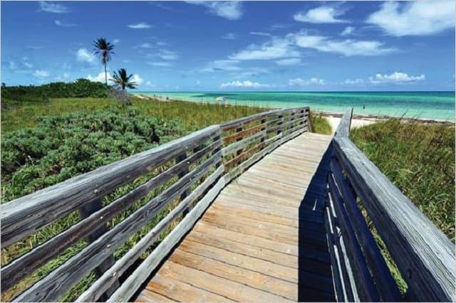 The best beaches in Florida Global Grasshopper