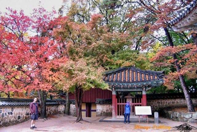 Top 10 awesome things to do in do in South Korea