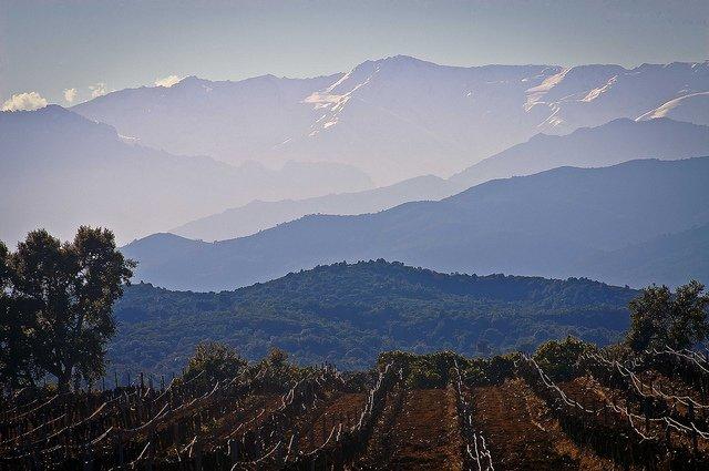 10 of the prettiest wine regions in France Global Grasshopper