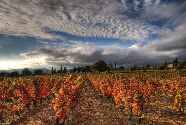 Provence -prettiest wine regions of France