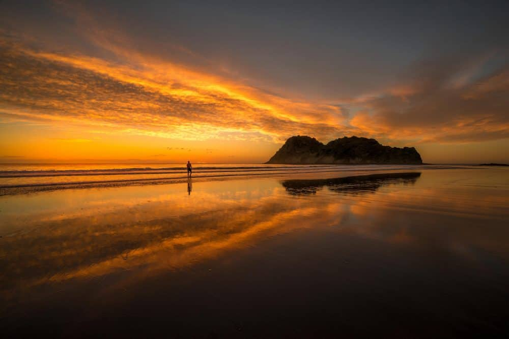 Whangara - best road trips New Zealand