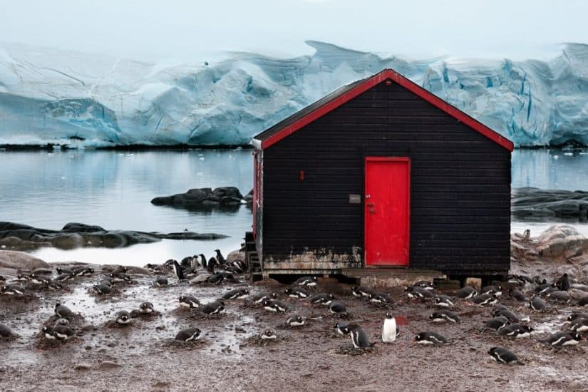 In BIG Pictures: exploring Antarctica