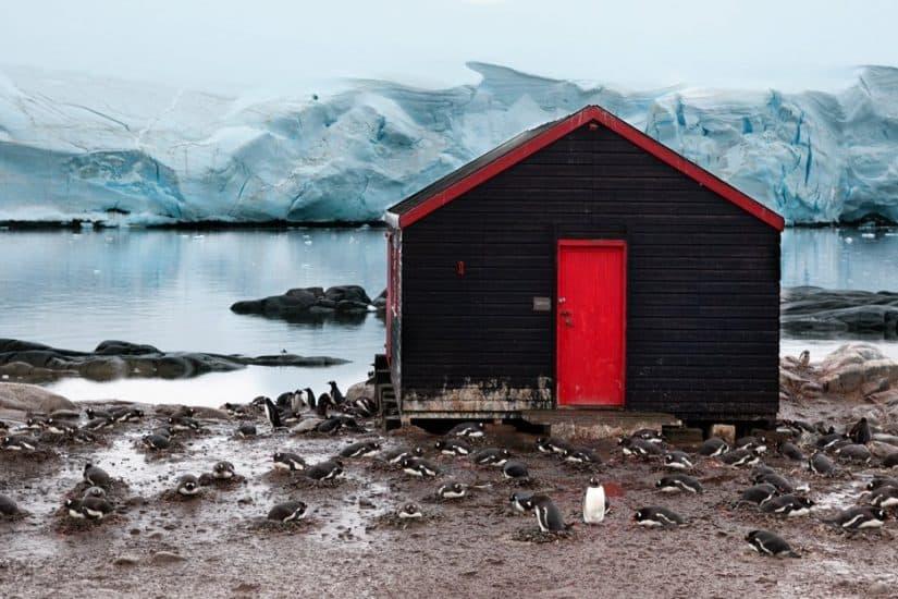 In BIG Pictures: exploring Antarctica