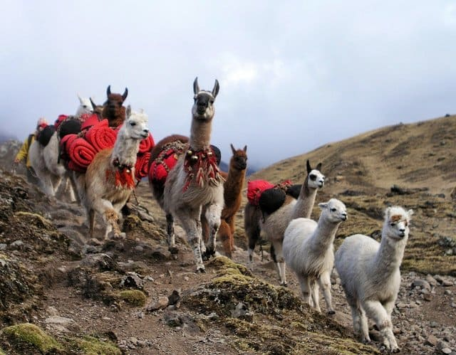 Beautiful places to visit in Peru