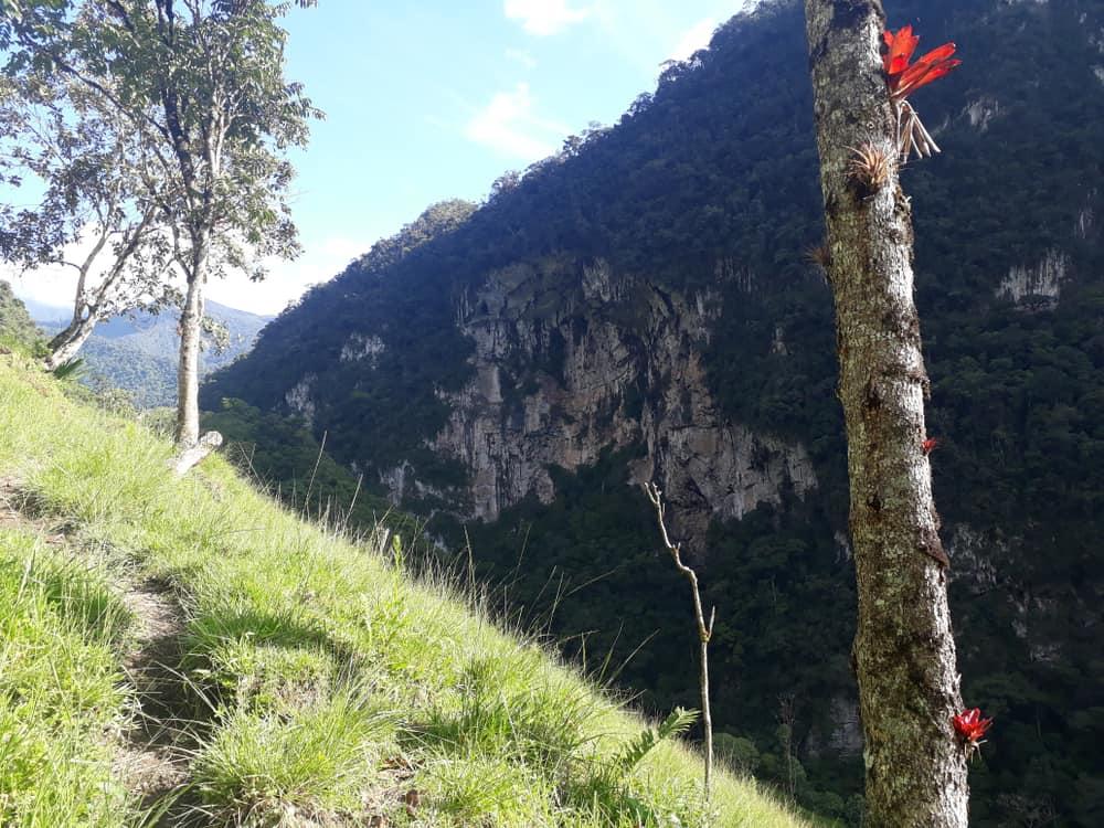Río Abiseo National Park