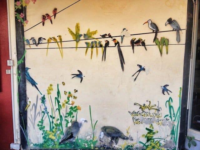 Bird street art gambia