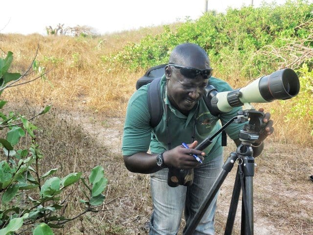 Gambia Bird watching guide
