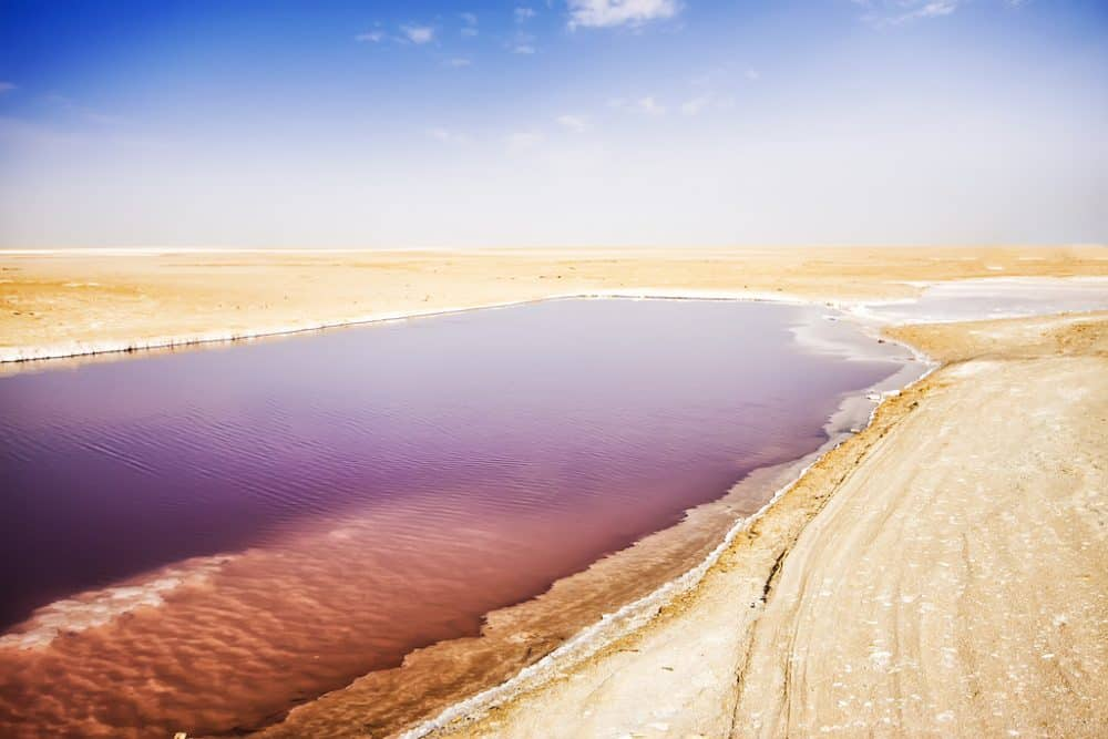 Chott el Djerid - the largest salt lake in Tunisia