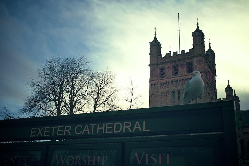 Exeter Seagull