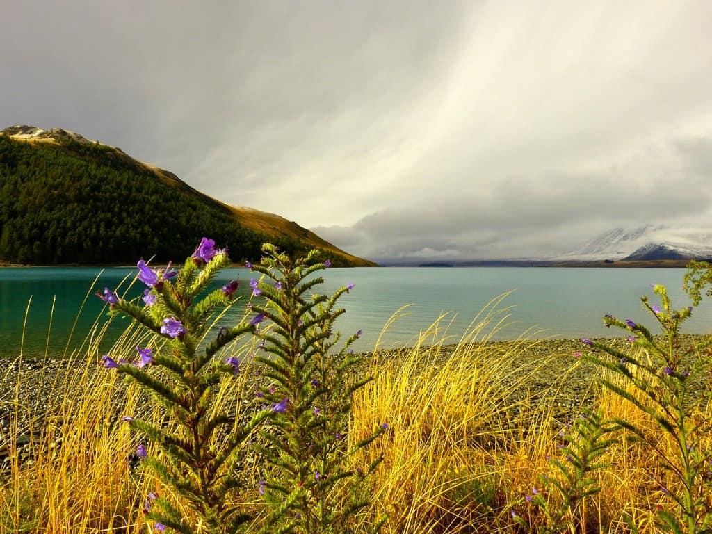 Mount John, Lake Tekapo, New Zealand