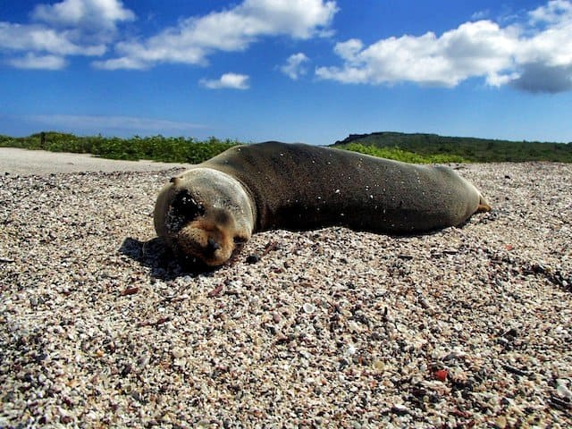 places to visit in the Galapagos islands