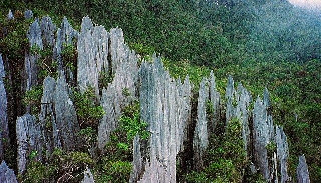 Pinnacles at Mulu