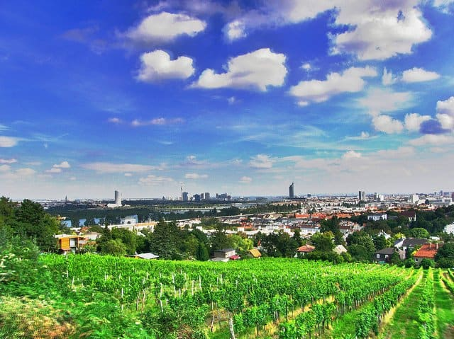 10 things to do in Vienna - a native's guide Global Grasshopper